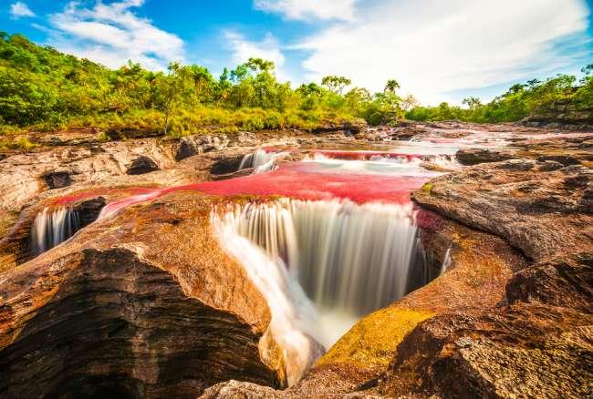 cano cristales il fiume colorato -