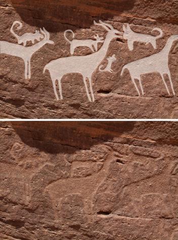 immagini preistoriche cani
